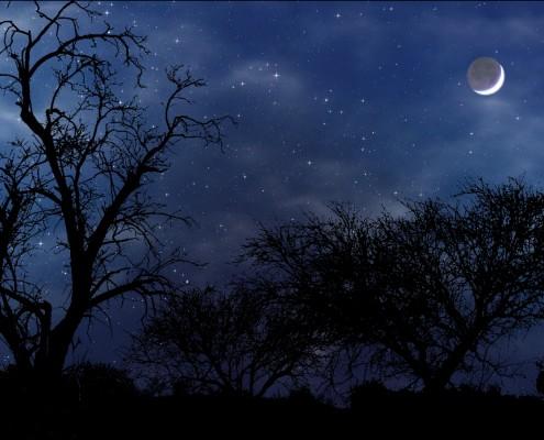 night_scene_widescreen_by_norif